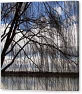 The Veil Of A Tree Canvas Print