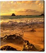 Thoughtful Morning Golden Coastal Paradise  Canvas Print