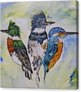 Three Kingfisher Birds - Painting By Ella Canvas Print
