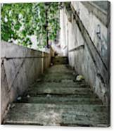 Tiber Steps Canvas Print