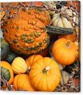 Time For Fall Canvas Print