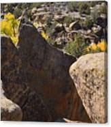 Top Of Rocks Above Canyon In Fall Canvas Print
