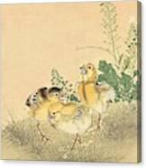 Top Quality Art - Keinen Kachoshokan 12view 3 Canvas Print