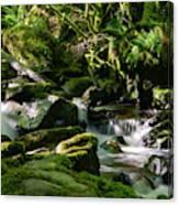 Torc Waterfalls Two Canvas Print