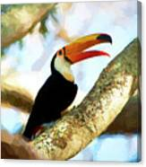 Toucan On A Tree Canvas Print