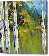 Touch Of Fall Canvas Print