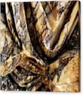 Trajan's Marble Canvas Print