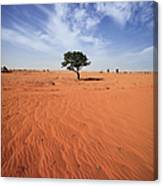 Tree On Landscape Canvas Print