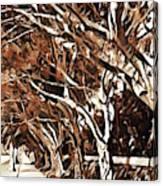 Treelined Canvas Print