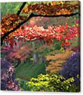 Trees In A Garden, Butchart Gardens Canvas Print