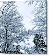 Trees With Snow Canvas Print