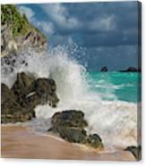 Tropical Beach Splash Canvas Print