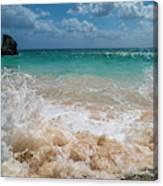 Tropical Fantastic View Canvas Print