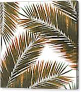 Tropical Palm Leaf Pattern 6 - Tropical Wall Art - Summer Vibes - Modern, Minimal - Brown, Copper Canvas Print