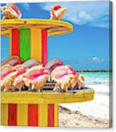 Turks And Caicos Conchs On A Spool Canvas Print