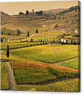 Tuscany Farmhouse And Vineyard In Fall Canvas Print