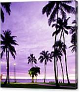 Usa, Hawaii, Oahu, Honolulu, Waikiki Canvas Print