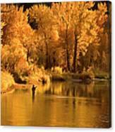 Usa, Idaho, Salmon River, Mature Man Canvas Print