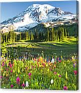 Usa, Washington, Mt. Rainier National Canvas Print