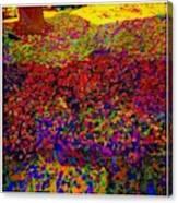 Van Gogh Visits My Back Yard Canvas Print