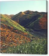 Velvet Hills Canvas Print