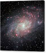 Very Detailed View Of The Triangulum Galaxy Canvas Print