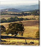 Victoria Countryside Layers Canvas Print