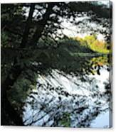 View Of The Lake Through The Branches Canvas Print
