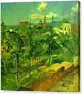 Vineyard At Vico Canvas Print