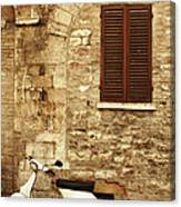 Vintage Scene Of A Stone Wall, Wooden Canvas Print