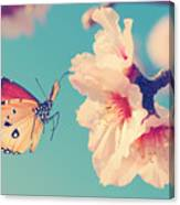 Vintage Spring Image With Butterfly And Canvas Print