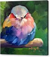 Violet Breasted Roller Bird Canvas Print