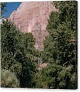 Virgin River And Cliff In Zion National Park, Utah - Utah300 00303 Canvas Print
