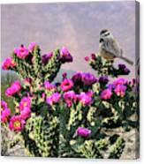 Walking Stick Cactus And Wren Canvas Print