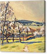 Warm Spring Light In The Fruit Orchard Canvas Print