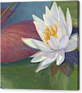 Water Beauty Canvas Print