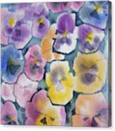 Watercolor - Pansy Design Canvas Print