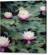 Waterlily Impressions Canvas Print