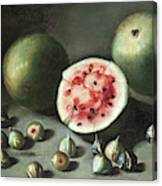 Watermelons And Figs On A Stone Ledge  Canvas Print