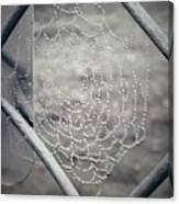 Web Dew Canvas Print