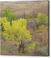 West Dakota September Splendor Canvas Print