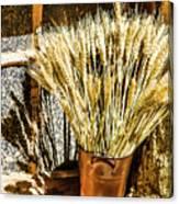 Wheat Tine  Canvas Print