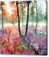 When Heathers Bloom Canvas Print