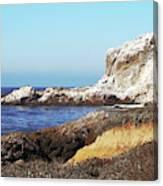 The White Rocks Of Piedras Blancas Canvas Print