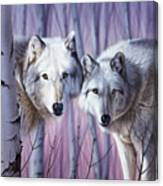 White Wolves By Birch Canvas Print