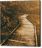 Wild Routes Canvas Print