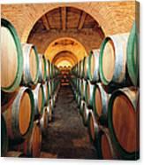 Wine Barrels In Cellar, Spain Canvas Print