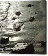 Winter Sun On The Tide Canvas Print