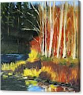 Winter Sunshine Landscape Canvas Print