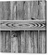 Wood Grain Black And White Canvas Print